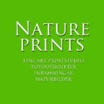 Natureprints.se
