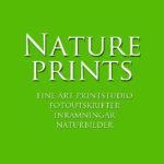 Natureprints.se